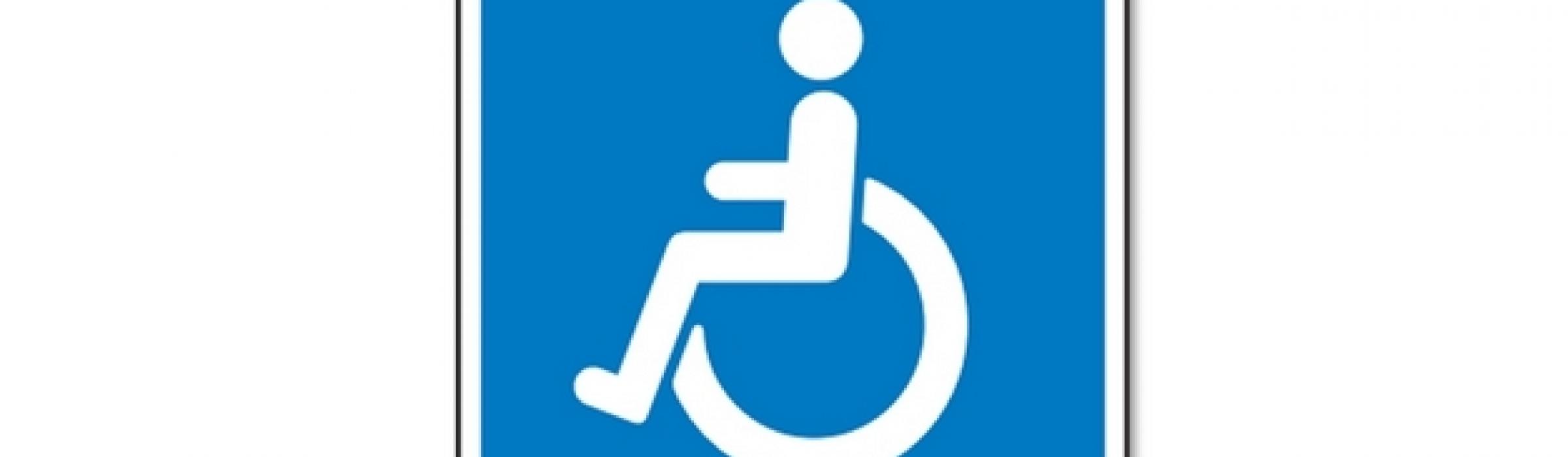 handicapskilt til bil