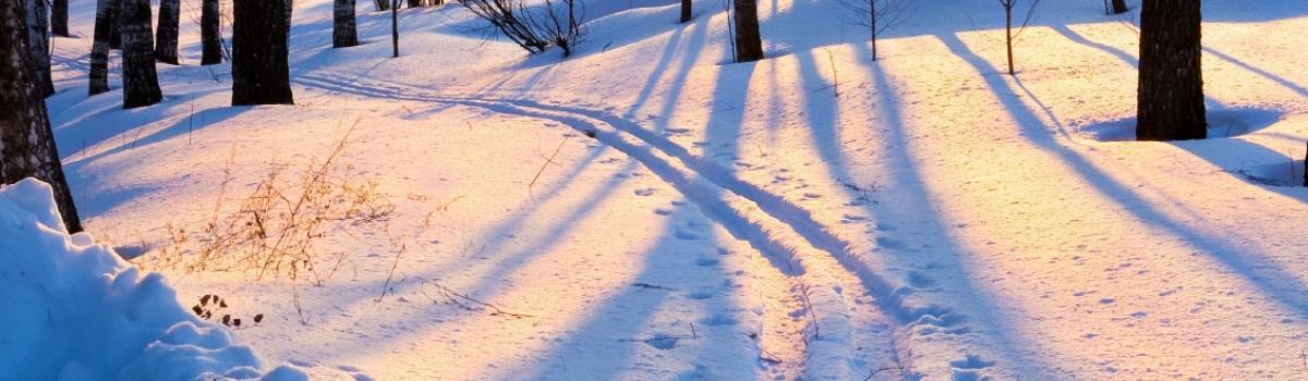 8 gode råd til at passe på lungerne i koldt vejr