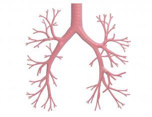 Hvad kan jeg gøre ved bronkiektasi?